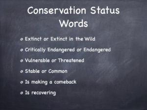 Wildlife Savers