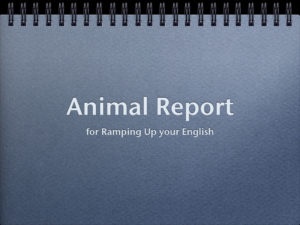 Animal Report Review